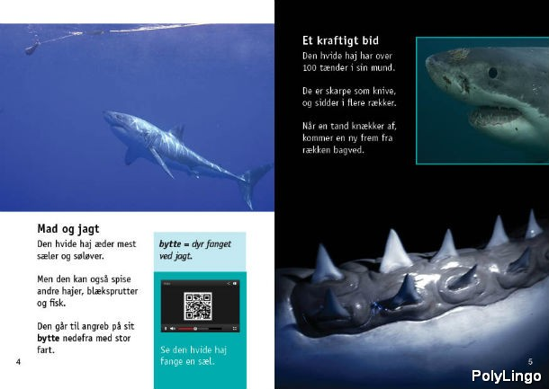 PolyLingo book White shark 3